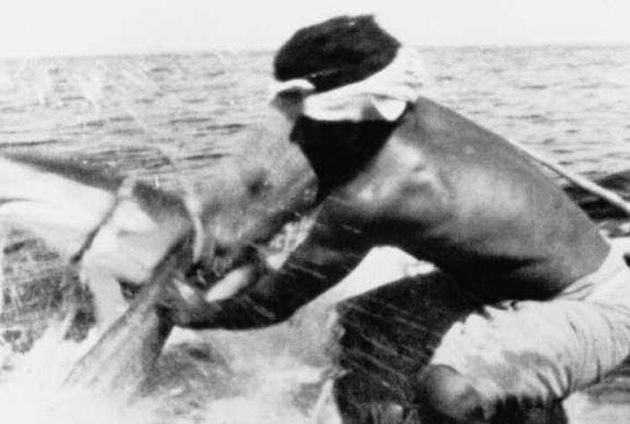 SHARKCALLERS OF KONTU